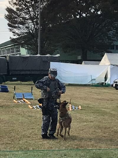 入間航空祭の警備犬展示の様子(トレーナーに従う警備犬)