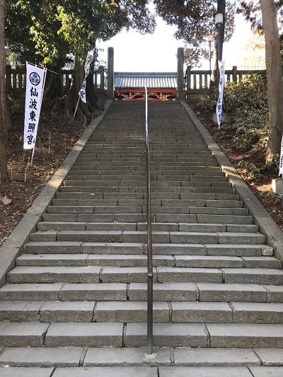 川越、仙波東照宮の参道(50段の階段)