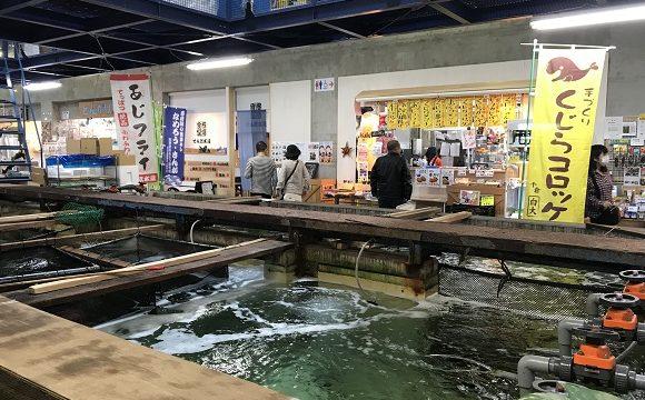 道の駅ちくら潮風王国の建物内にある大きな鮮魚いけす