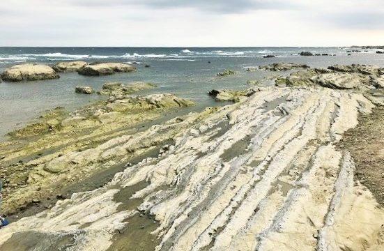 ちくら潮風王国横の干潮時で岩場が顔を出した千田海岸