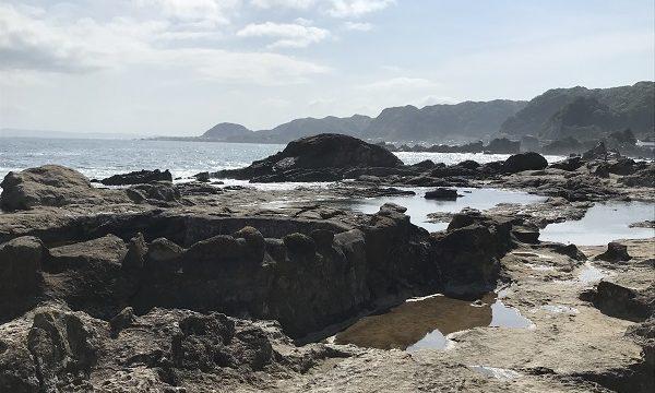 干潮時に大きな潮だまりができる仁右衛門島の岩場