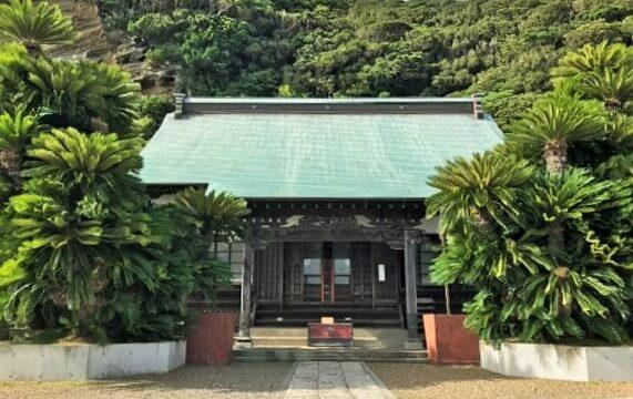 大福寺(崖観音)の本殿と立派なソテツ