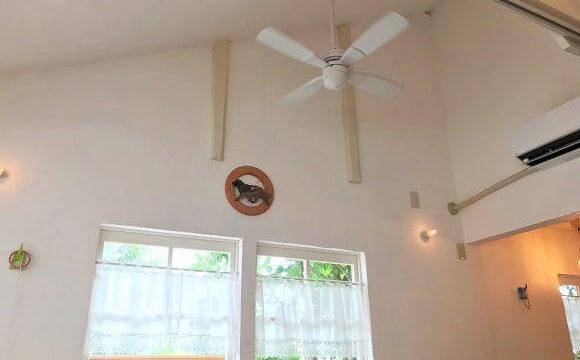 カフェグリーン店舗の開放的な高い天井