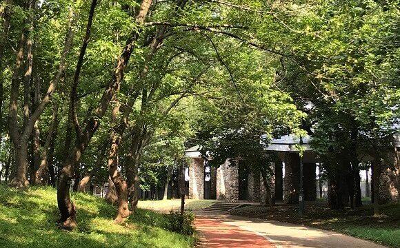 彩の森入間公園内にある屋根付きの大型休憩舎