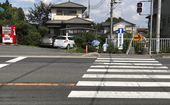 巾着田への道(横断歩道を渡る)