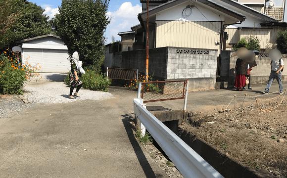 巾着田への道(ここを右折)