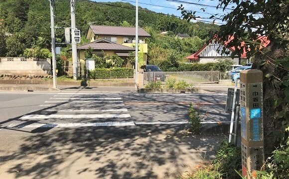 巾着田への道(剣道に出たら右折)