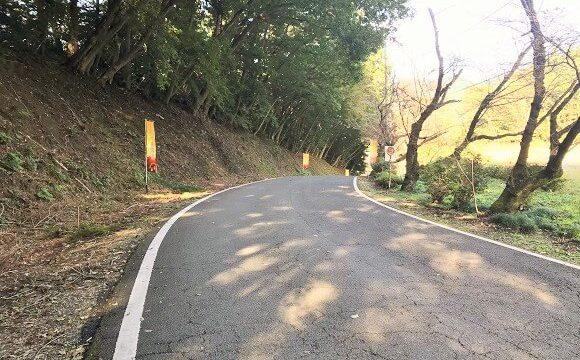 宝登山ロープウェイ乗り場までの坂道