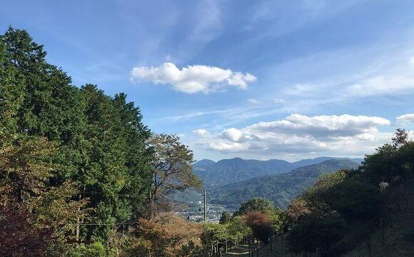 宝登山山頂から臨む絶景