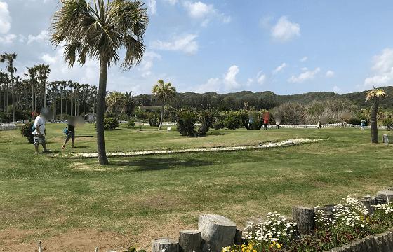 館山ファミリーパークの広々としたグランドゴルフ場