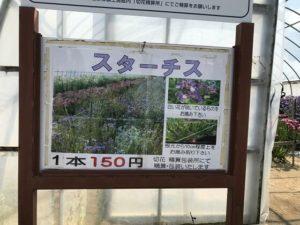 ハウス内に咲いている花の名前、料金の説明看板