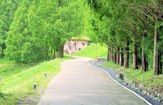 公園の入口から見えるきのこの家